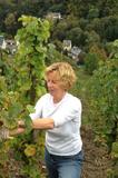 Herbst-Weinlese
